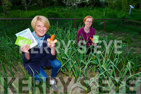 Sheila O'Sullivan left and Paula O'Connor from Kilcummin Looking Good who have launched a Stop Food Waste campaign