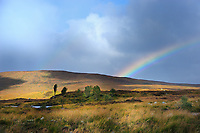 SC - Prov. PERTSHIRE<br /> Rainbow in the near vicinity of Laggan<br /> <br /> Full lsize: 69,2 MB