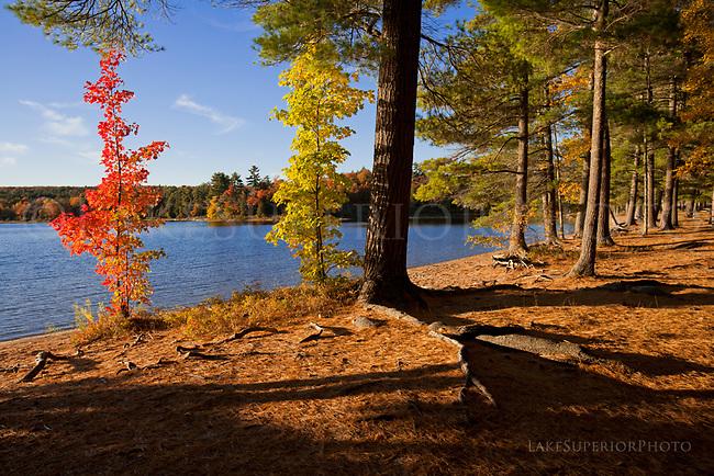 Deer Lake, Autumn