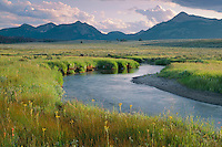 Gardner River<br /> Mt. Holmes, Dome Mountain and Antler Peak<br /> Yellowstone National Park<br /> Rocky Mountains,  Wyoming