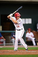 Harrisburg Senators left fielder Cutter Dykstra (15) at bat during a game against the New Hampshire Fisher Cats on June 2, 2016 at FNB Field in Harrisburg, Pennsylvania.  New Hampshire defeated Harrisburg 2-1.  (Mike Janes/Four Seam Images)