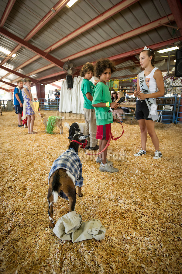 75th Amador County Fair, Plymouth, Calif.<br /> <br /> Kids with their favorite dressed-up animals during Day 3's Livestock Beauty Pageant