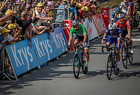 Close finish win by Fernando Gaviria (COL/Quick Step Floors) over Peter Sagan (SVK/Bora Hansgrohe) and André Greipel (GER/Lotto Soudal) <br /> <br /> Stage 4: La Baule > Sarzeau (192km)<br /> <br /> 105th Tour de France 2018<br /> ©kramon