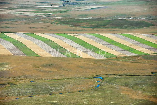 Northeast Colorado farmland. 2013. 89935