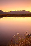 Montana, Southwest, Monida, Centennial Valley, Red Rock Lake wildlife refuge. Red Rock Lake at dawn in autumn.