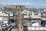 Washington Coast, Westport, fishing charters, commercial fishing boats, Port of Westport, Grays Harbor County, Southwest Washington, Washington State, Pacific Northwest, USA,