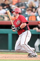 Konrad Schmidt #33 of the Arizona Diamondbacks bats against the San Francisco Giants in the first spring training game of the season at Scottsdale Stadium on February 25, 2011  in Scottsdale, Arizona. .Photo by:  Bill Mitchell/Four Seam Images.