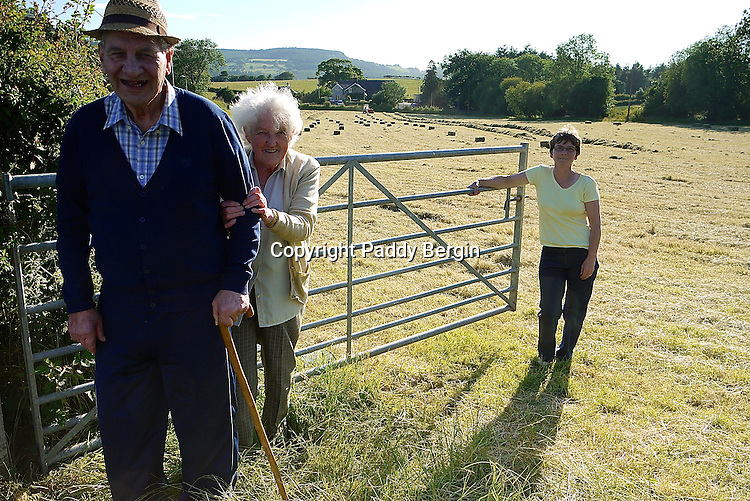 The farmer and his wife on a small family owned farm in the village of Llanafan which is in the county of Ceredigion, West Wales. The village is situated on the north side of the beautiful Ystwyth Valley and the river eventually flows into the sea at the seaside town of Aberystwyth. Haymaking for this farm is an important time and is dependant on the weather. When its good enough and the grass is cut it is left to dry and then collected as in these photos. Local people come and help to ensure all the hay is brought in and stored in the barn.<br /> The tractor they are using is a 1953 Massey Ferguson which is still in good working order. Stock Photo by Paddy Bergin