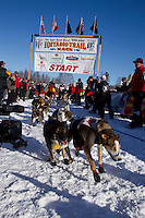 Sunday, March 4, 2012   Ryne Olson's team lunges as they leave the Restart of Iditarod 2012 in Willow, Alaska.