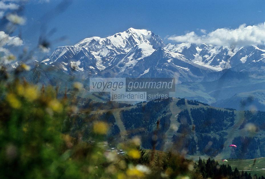Europe/France/Rhône-Alpes/73/Savoie/Hauteluce: Le Mont Blanc  4810 m , vu depuis le Col des Saisies