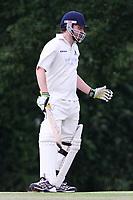 Theydon Bois Cricket Club 2nd XI v Hockerill I I 14th June 2014