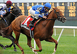 10 September 19: Strike the Bell (no. 1), ridden by Ramon Dominguez and trained by David Donk, wins the 23rd running of the grade 3 Noble Damsel Stakes for fillies and mares three years old and upward at Belmont Park in Elmont, New York.  (Bob Mayberger/Eclipse Sportswire)