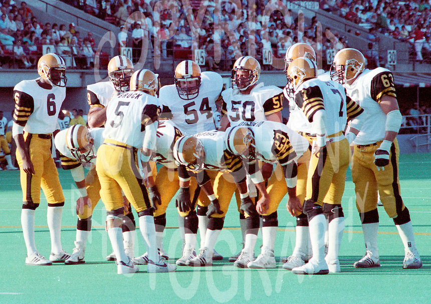 HamiltonTiger Cats 1984. Copyright photograph Scott Grant
