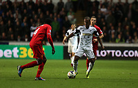 Pictured: (L-R) Kolo Toure, Wayne Routledge.<br /> Monday 16 September 2013<br /> Re: Barclay's Premier League, Swansea City FC v Liverpool at the Liberty Stadium, south Wales.