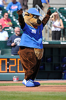 Cubbie Bear, the Iowa Cubs mascot, calls balls and strikes prior to the game against the Iowa Cubs at Principal Park on April 14, 2016 in Des Moines, Iowa.  The Cubs won 4-2 .  (Dennis Hubbard/Four Seam Images)
