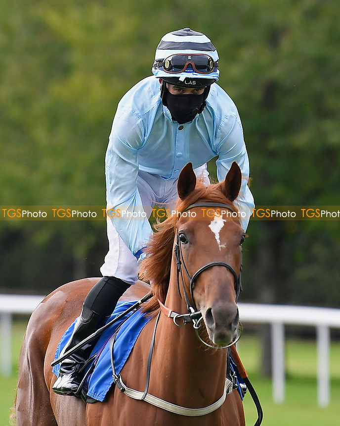 Bella Notte ridden by Mark Crehan  during Horse Racing at Salisbury Racecourse on 11th September 2020