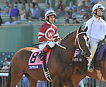 TAPIZAR, ridden by Corey Nakatani and trained by Steve Asmussen, before the Breeders' Cup Dirt Mile at Santa Anita Park in Arcadia, California on November 3, 2012.