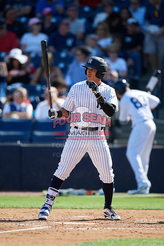 New York Yankees pinch hitter Oswaldo Cabrera (97) at bat during a Grapefruit League Spring Training game against the Toronto Blue Jays on February 25, 2019 at George M. Steinbrenner Field in Tampa, Florida.  Yankees defeated the Blue Jays 3-0.  (Mike Janes/Four Seam Images)
