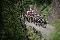 Team Mitchelton-Scott controlling the peloton in service of team leader & GC leader Adam Yates (GBR/Mitchelton-Scott)<br /> <br /> Stage 6: Saint-Vulbas to Saint-Michel-de-Maurienne (228km)<br /> 71st Critérium du Dauphiné 2019 (2.UWT)<br /> <br /> ©kramon