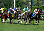09 August 15: Telling (no. 7), ridden by Javier Castellano and trained by Steve Hobby, is in fourth place first time past the stands before winning the 35th running of the grade 1 Sword Dancer Invitational for three year olds and upward at Saratoga Race Track in Saratoga Springs, New York.