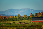 View of a farm under Mount Katahdin from Patten, Maine, USA