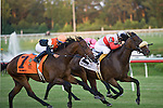 16 July 2011: Air Support and Alex Solis beat Banned and Juan Lezcano by a neck to win the $600,000 Virginia Derby (Gr II) at Colonial Downs in New Kent, Va. Air Support is owned by Stuart S. Janney, III and trained by Claude R. McGaughey III (Susan M. Carter/Eclipse Sportswire)