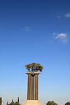 Israel, Olive columns sculpture by Ran Morin in Kibbutz Ramat Rachel