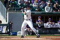 Brendan Tinsman (9) of the Wake Forest Demon Deacons at bat against the Furman Paladins at BB&T BallPark on March 2, 2019 in Charlotte, North Carolina. The Demon Deacons defeated the Paladins 13-7. (Brian Westerholt/Four Seam Images)