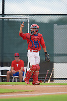 GCL Phillies West catcher Bruce Wang (5) during a Gulf Coast League game against the GCL Tigers West on July 27, 2019 at the Carpenter Complex in Clearwater, Florida.  (Mike Janes/Four Seam Images)
