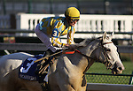 Dancinginherdreams with Julien Leparoux up wins The Pocahontas (grII) at Churchill Downs. 10.31.2010..photo Ed Van Meter