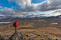 Hiker pauses to view the Nigu River looking south at the Brooks Range mountains, Gates of the Arctic National Park, Alaska.