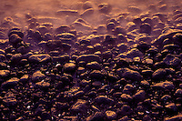 Ili ili (water washed stones) on the south Kohala coast, like those used in spa treatments