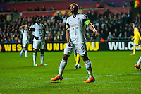 Swansea, UK. Thursday 20 February 2014<br /> Pictured: Ashley Williams shows his frustration after missing a shot on goal <br /> Re: UEFA Europa League, Swansea City FC v SSC Napoli at the Liberty Stadium, south Wales, UK