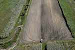 Aerial view of sugar cane fields being harvested