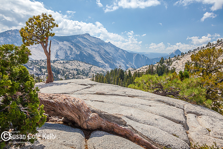 Cloud's Rest on the Tioga Road, Yosemite National Park, CA, USA