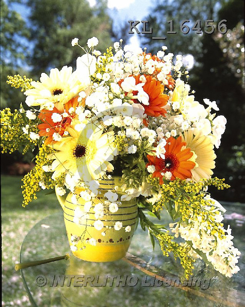 Interlitho, FLOWERS, BLUMEN, FLORES, photos+++++,flowers, pot, yellow,KL16456,#F#