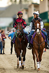 DEL MAR, CA - NOVEMBER 01: Bolt d'Oro and Carlos Aguilar comes off the track at Del Mar Thoroughbred Club on November 01, 2017 in Del Mar, California. (Photo by Alex Evers/Eclipse Sportswire/Breeders Cup)