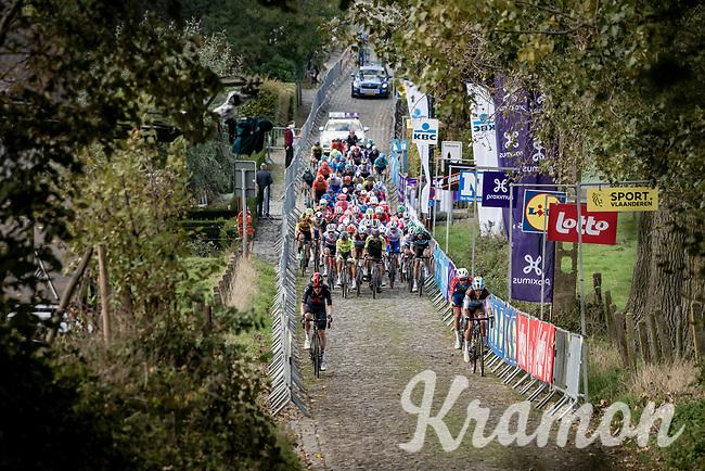 peloton coming up the infamous Koppenberg<br /> <br /> 104th Ronde van Vlaanderen 2020 (1.UWT)<br /> 1 day race from Antwerpen to Oudenaarde (BEL/243km) <br /> <br /> ©kramon