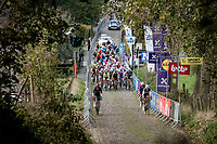peloton coming up the infamous Koppenberg<br /> <br /> 104th Ronde van Vlaanderen 2020 (1.UWT)<br /> 1 day race from Antwerpen to Oudenaarde (BEL/243km) <br /> <br /> ©kramon