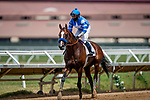 AUG 01: Thousand Words with Abel Cedillo wins the Shared Belief Stakes at Del Mar Thoroughbred Club in Del Mar, California on August 01, 2020. Evers/Eclipse Sportswire/CSM
