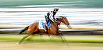 June 4, 2021: A horse exercises on the training track on Friday at the Belmont Stakes Festival at Belmont Park in Elmont, New York. Scott Serio/Eclipse Sportswire/CSM
