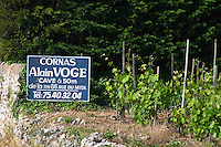 vineyard and sign domaine alain voge cornas rhone france