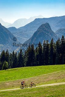 Deutschland, Bayern, Chiemgau, Inzell: Radfahrer auf dem Weg zur Baeckeralm vor Chiemgauer Alpen   Germany, Upper Bavaria, Chiemgau, Inzell: hikers heading for Baeckeralm, with Chiemgau Alps at background