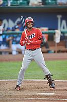 Kevin Maitan (9) of the Orem Owlz bats against the Ogden Raptors at Lindquist Field on August 3, 2018 in Ogden, Utah. The Raptors defeated the Owlz 9-4. (Stephen Smith/Four Seam Images)