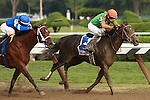 Favorite Alpha with Ramon Dominguez and long shot Golden Ticket dead heat in the Grade I $1,000,000 Travers Stacks.  Alpha Trainer: Kiaran McLaughlin. Owner Godlphin Racing. Golden Ticket trainer Ken McPeek.  Owner Magic City Thoroughbred.