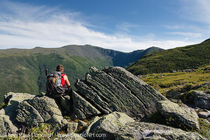 Looking across the Great Gulf Wilderness at Mount Washington in the Presidential Range from along the Six Husbands Trail in Thompson and Meserve's Purchase, New Hampshire during the summer months. This area is part of the White Mountains.