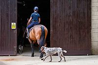 Emma Gibb and Ginny hacking out. 210608-Ginny Thompson at home. Cheltenham. Gloucestershire. Great Britain. Copyright Photo: Libby Law Photography