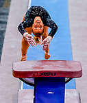 February 19, 2021: Towson University's Nikki Borkowski competes in the vault during the 2nd Annual George McGinty Alumni Meet at the SECU Arena at Towson University in Towson, Maryland. Scott Serio/Eclipse Sportswire/CSM