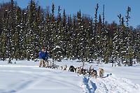 Dog musher Martin Buser runs his team during a spring training run on a lake  Southcentral, Alaska<br /> <br /> MR2013-03-23BuserMartin