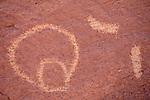 Homolovi Site Petroglyph